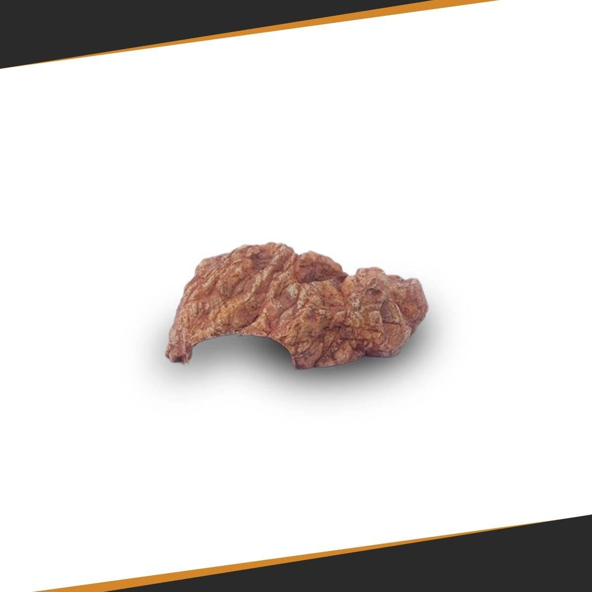 Plug & Play Pack - SpectraBULB X55 + Reflector + grow chamber Probox 60