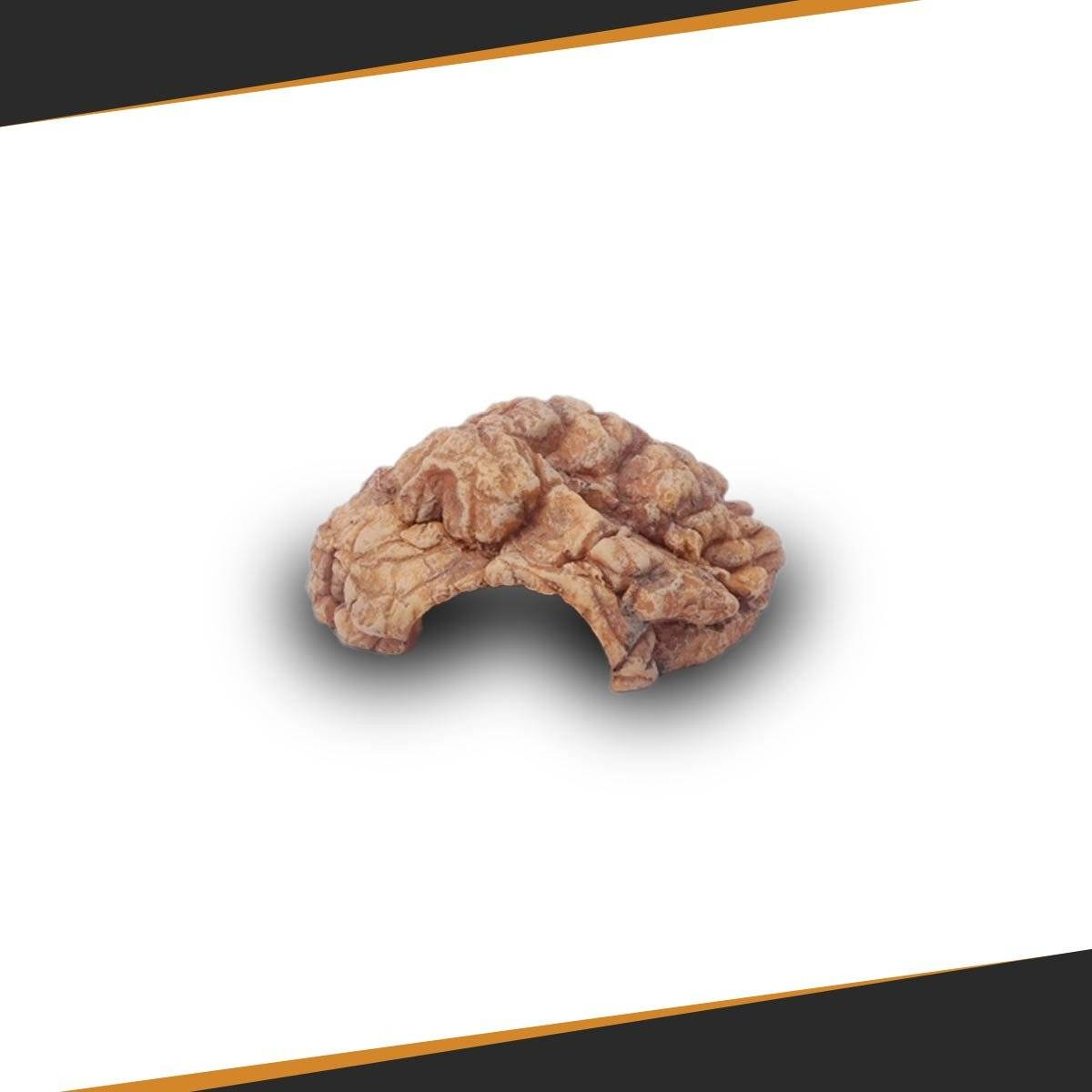 Ready to Grow box 60x60 Complete Pack - SpectraBULB X55 - Start Your Indoor Cultivation Easily!