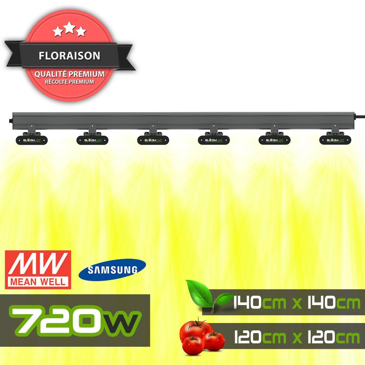 Tee-Shirt TerraLED