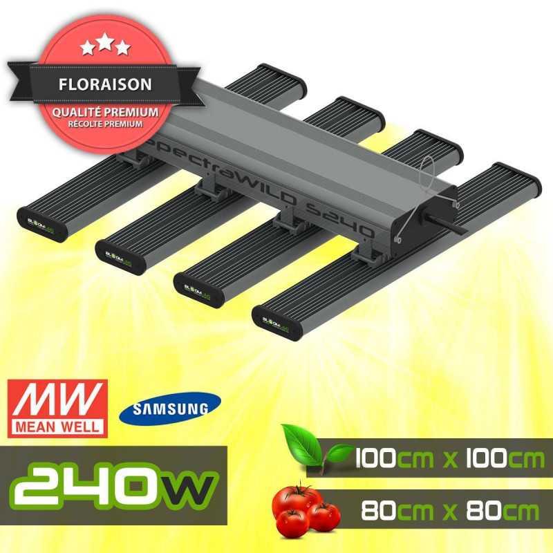GVL - Barre LED sur Rail 60W - Éclairage Horticole LED pour murs végétaux