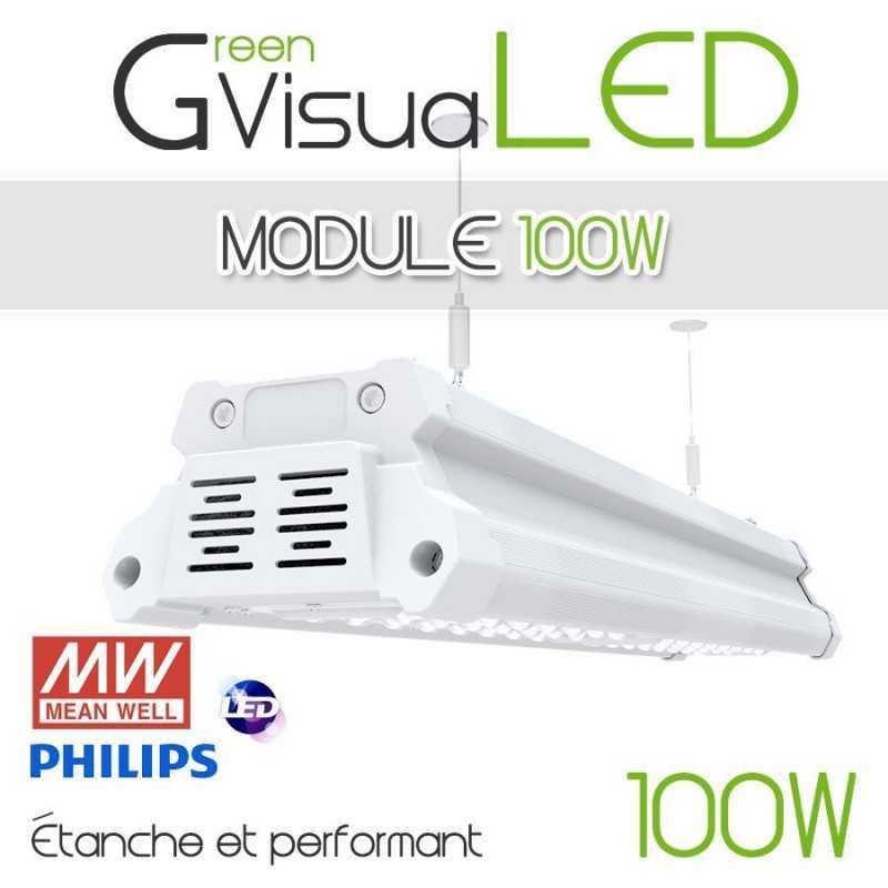 Pack ampoules led pour plantes