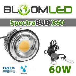 Spot encastrable 12W - LED CREE - 360° pour l'éclairage de tableaux et murs végétaux