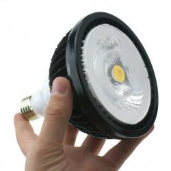Module 100W - Eclairage puissant et étanche pour murs végétaux et plantes vertes en intérieur - 100W